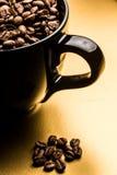 Gérmenes del café Foto de archivo libre de regalías