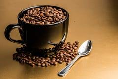 Gérmenes del café Imagen de archivo libre de regalías