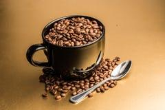 Gérmenes del café Foto de archivo