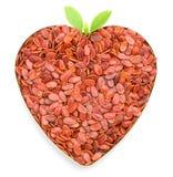 Gérmenes en forma de corazón del melón Fotografía de archivo libre de regalías