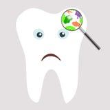 Gérmenes y bacterias del diente Foto de archivo
