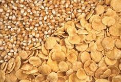 Gérmenes y copos de maíz del maíz Imagen de archivo libre de regalías