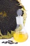 Gérmenes y petróleo de girasol Imagen de archivo libre de regalías