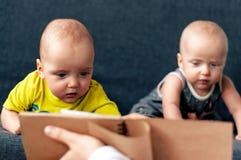 Gêmeo, sete meses imagens de stock
