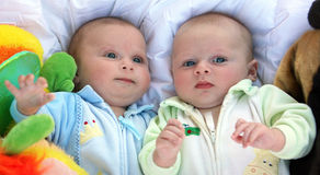 Gêmeos Fotos de Stock