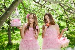 Gêmeos no estilo cor-de-rosa da boneca foto de stock