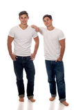 Gêmeos ocasionais Fotografia de Stock