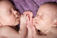 Gêmeos recém-nascidos fotos de stock royalty free