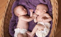 Gêmeos recém-nascidos Fotografia de Stock Royalty Free