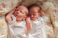 Gêmeos recém-nascidos Imagens de Stock