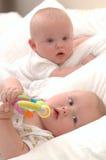 Gêmeos velhos de seis meses do bebê foto de stock royalty free