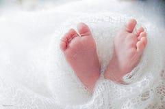 Gîte nouveau-né Image stock