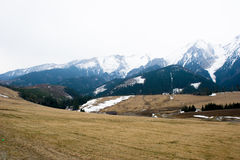 gór wiosna tatra Obraz Stock