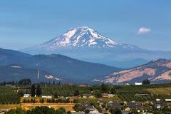 Góra Adams nad kapiszon Rzeczną doliną w Oregon fotografia stock