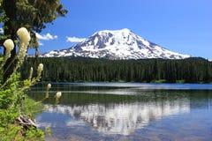 Góra Adams od Takhlakh jeziora Obrazy Royalty Free