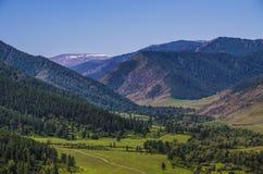 Góra Altai Obrazy Stock