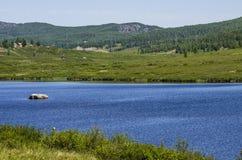 Góra Altai Obraz Royalty Free