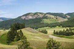 Góra Altai Fotografia Stock