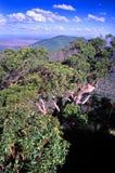 Góra Archer park narodowy Australia Fotografia Royalty Free