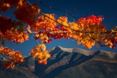 Góra Baranec Fotografia Stock