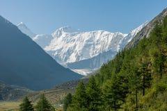Góra Belukha, ranek Fotografia Royalty Free