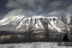 Góra Fernie Zdjęcia Stock
