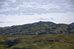 Góra Hamilton w zieleni Zdjęcie Stock