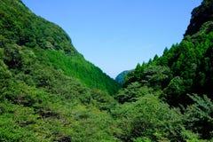 Góra i drzewo Obraz Royalty Free