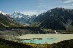 Góra i Dziwki Dolina Cook, Nowa Zelandia Zdjęcia Royalty Free