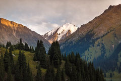 Góra i las Zdjęcie Stock
