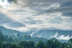 Góra i las Obrazy Royalty Free