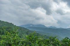 Góra 3 i las Zdjęcie Stock