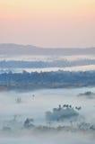 Morze mgła w ranku Obraz Royalty Free