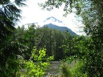 Góra i rzeka Obrazy Royalty Free