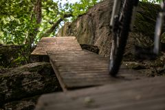 Góra jechać na rowerze w Szwedzkim lesie obraz royalty free
