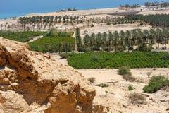 góra judean skłony obraz stock