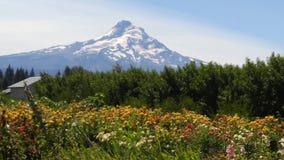 Góra kapiszon Zdjęcie Royalty Free