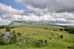 Góra krajobraz wśród łąkowych traw Zdjęcia Stock