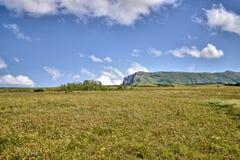 Góra krajobraz wśród łąkowych traw Obrazy Royalty Free