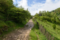 Góra krajobraz w chmurnym letnim dniu Fotografia Stock