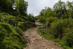 Góra krajobraz w chmurnym letnim dniu Zdjęcia Stock