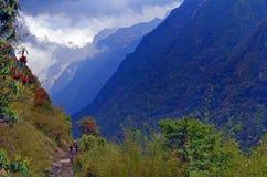 Góra krajobraz w himalaje, Annapurna Podstawowego obozu ślad Wzgórza z lasem, rododendronowi krzaki fotografia royalty free