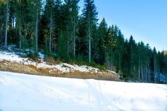 Góra krajobraz w jaskrawym dniu Obrazy Stock