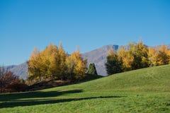 Góra krajobraz w jesieni barwi, Jeziorny Benmore, Nowa Zelandia Zdjęcia Stock