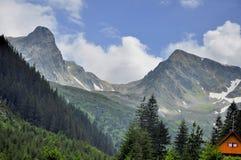 Góra krajobraz w lecie Zdjęcia Royalty Free