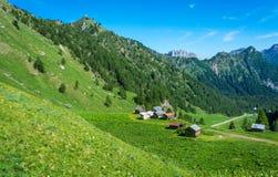 Góra krajobraz w lecie z osobliwie stajniami w Trentino alcie Adige Widok od Passo Rolle, Włoscy dolomity, Trento, I fotografia stock