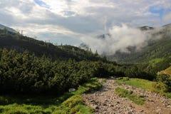 Góra krajobraz w Wysokim Tatras po deszczu obraz royalty free