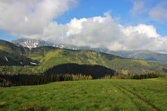 Góra krajobraz w Wysokim Tatras po deszczu Zdjęcie Royalty Free