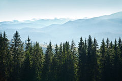 Góra krajobraz z drzewami Obraz Royalty Free