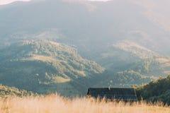 Góra krajobraz z jedlinowymi drzewami, drewnianymi ogrodzeniami i chałupą w Ukraina, fotografia stock